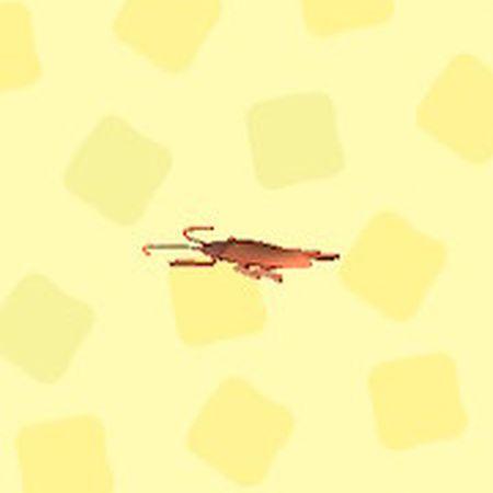 おもちゃのゴキブリ2.jpg