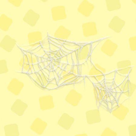 クモのす2.jpg