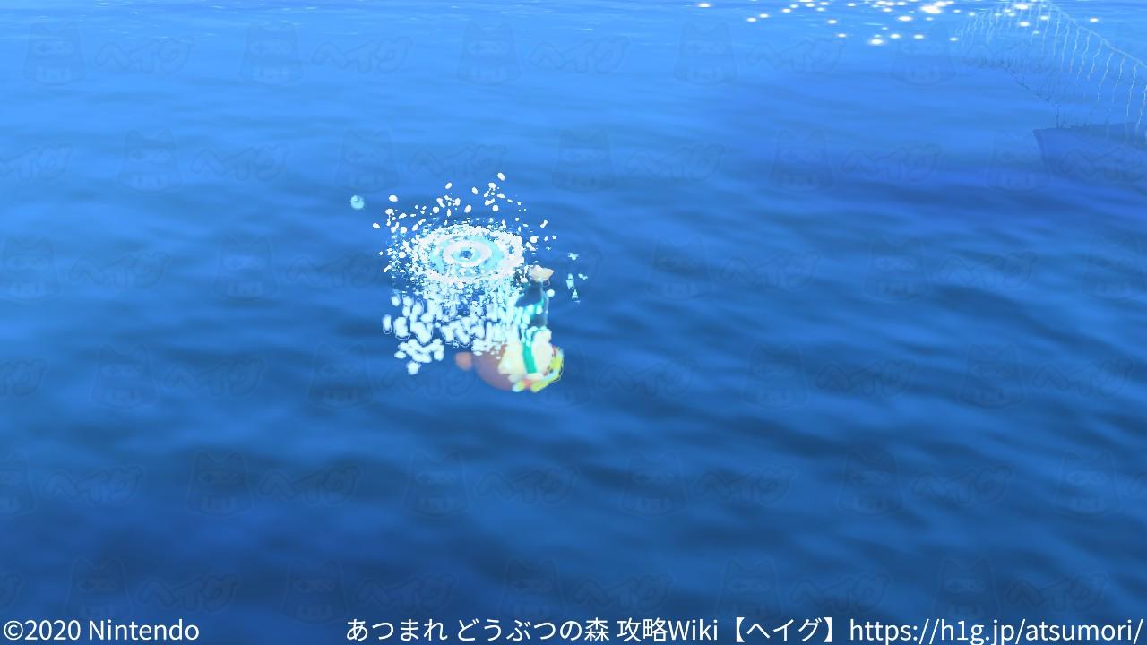 遊泳5.jpg