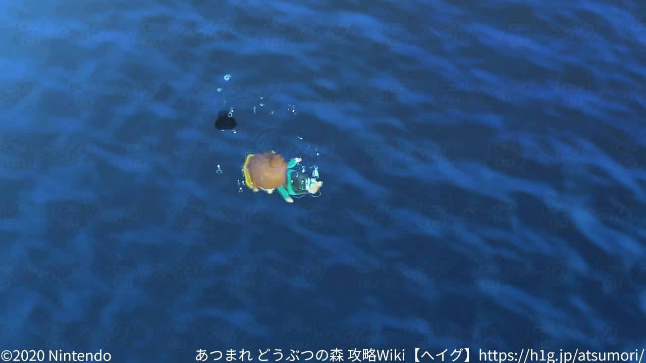 遊泳6.jpg