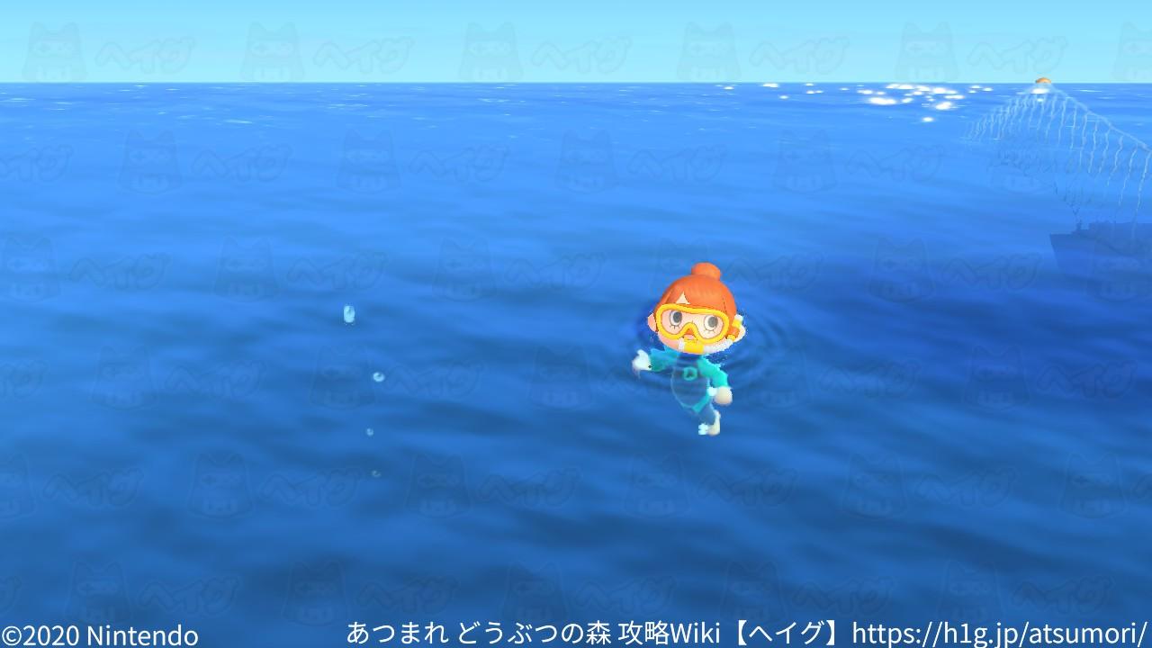 遊泳7.jpg