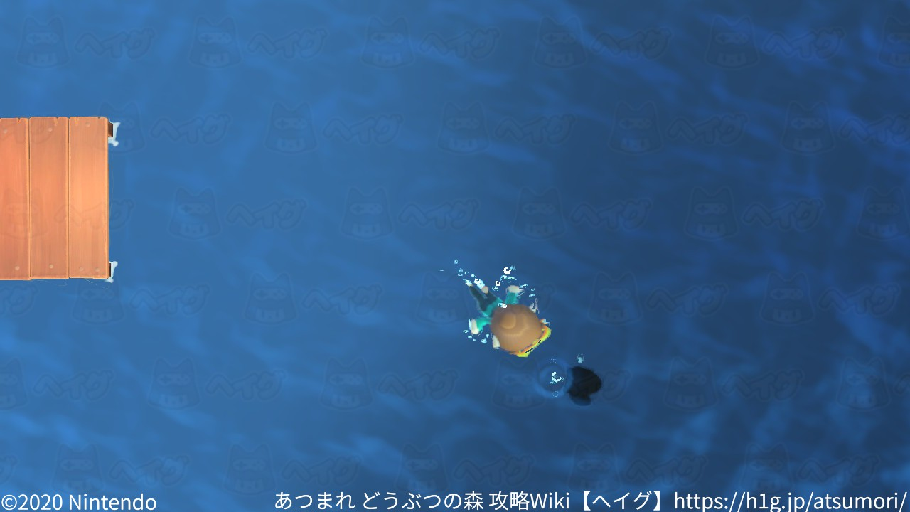 遊泳8.jpg