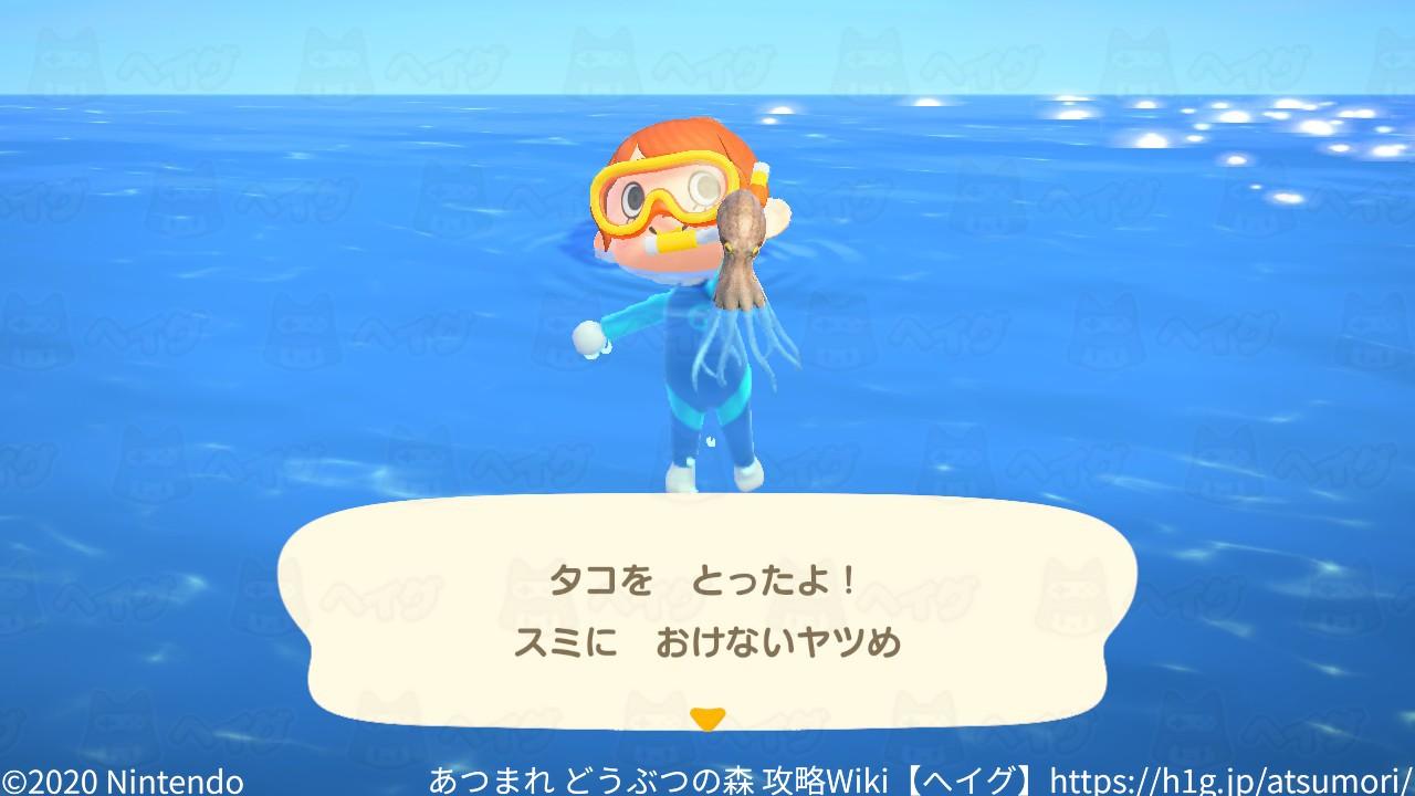 遊泳9.jpg