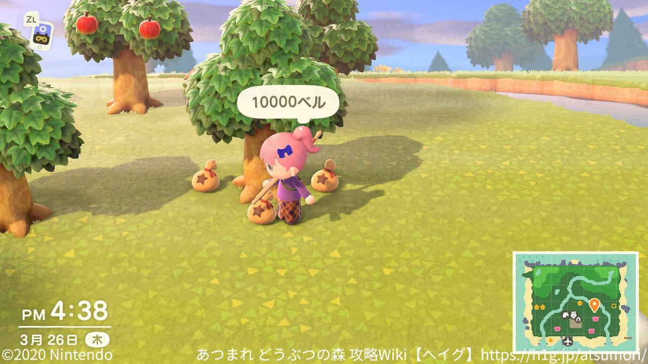 カネのなる木2.jpg