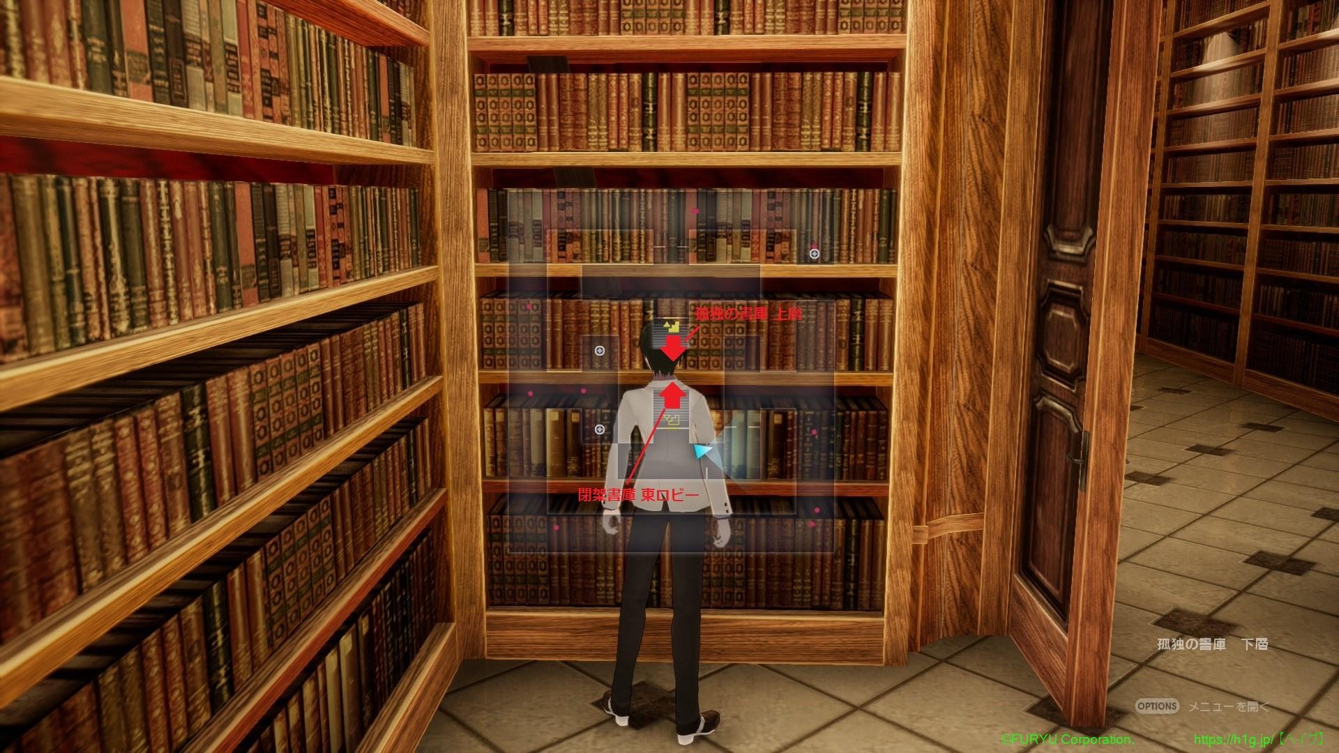 孤独の書庫 下層.jpg