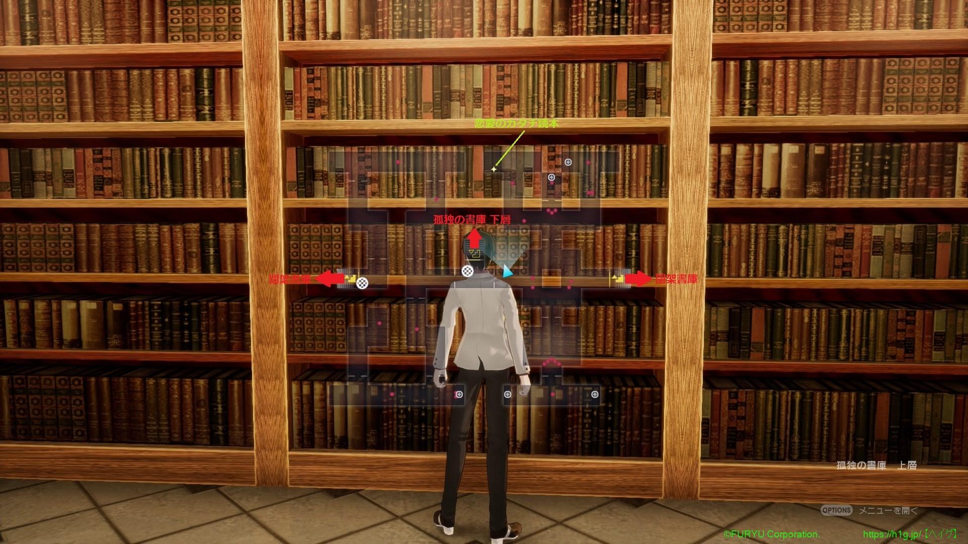 孤独の書庫上層.jpg