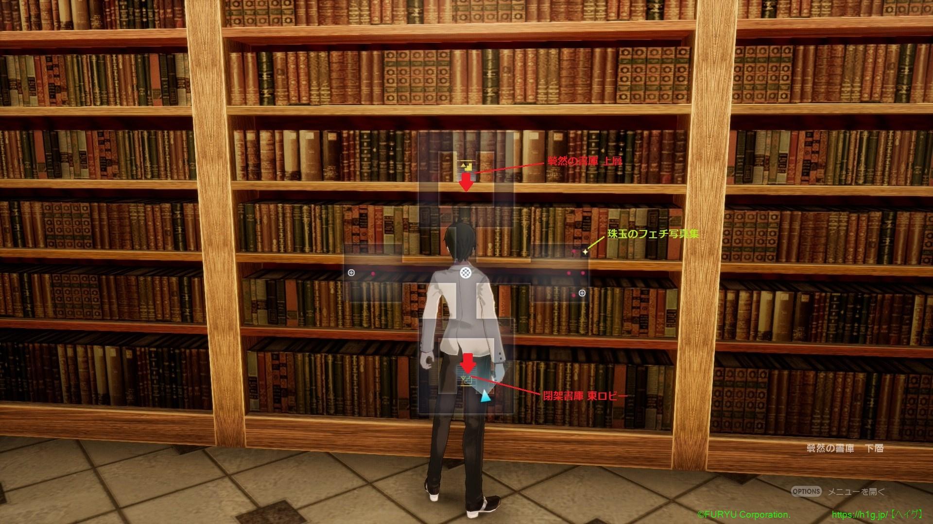 煢然の書庫 下層.jpg