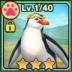 ロイヤルペンギン(フォト).png