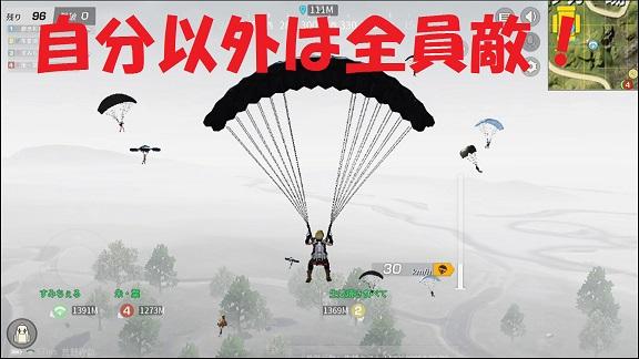 パラシュート的目視画像.jpg
