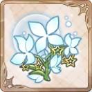魔法の薬草.jpg