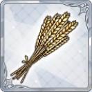黄金色の麦穂.jpg