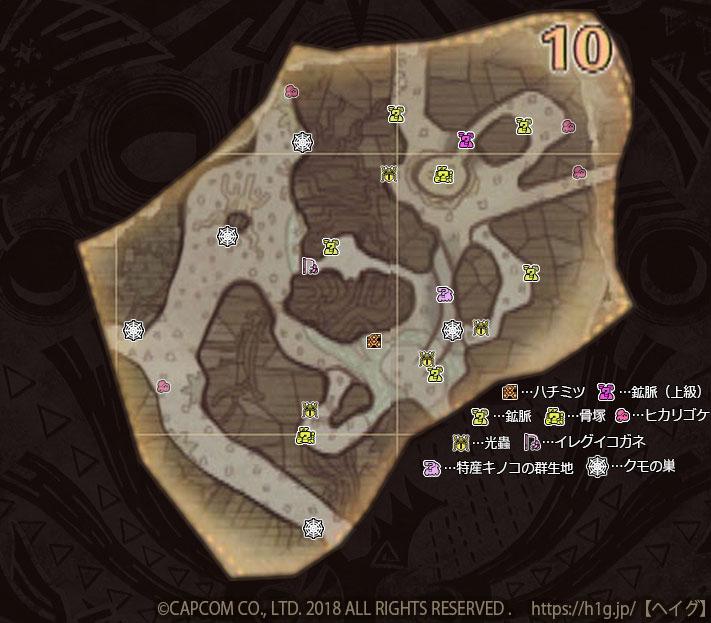 古代樹の森-下層-10-1.jpg