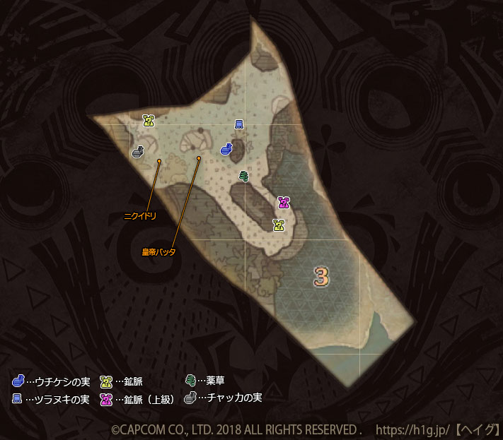 古代樹の森-下層-3-1.jpg