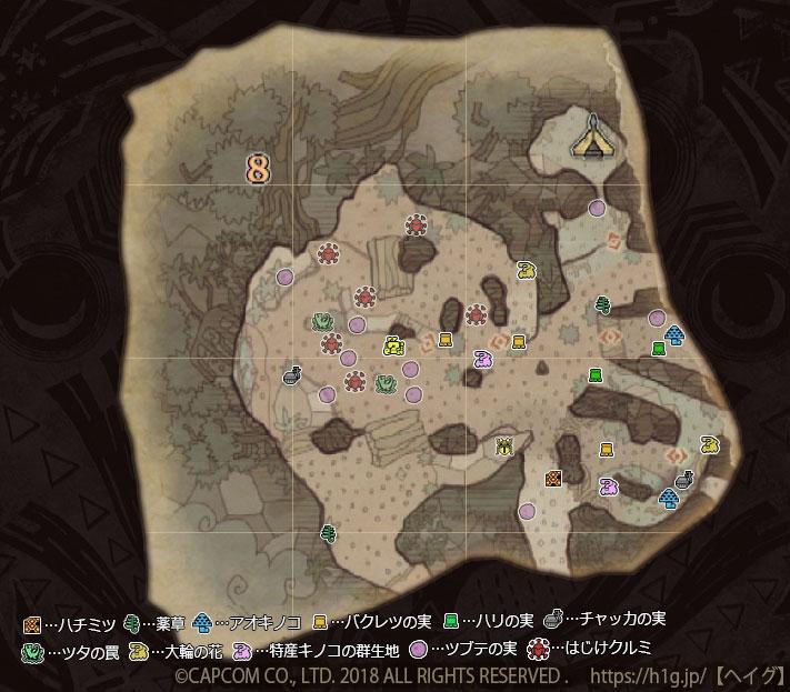 古代樹の森-下層-8-1.jpg
