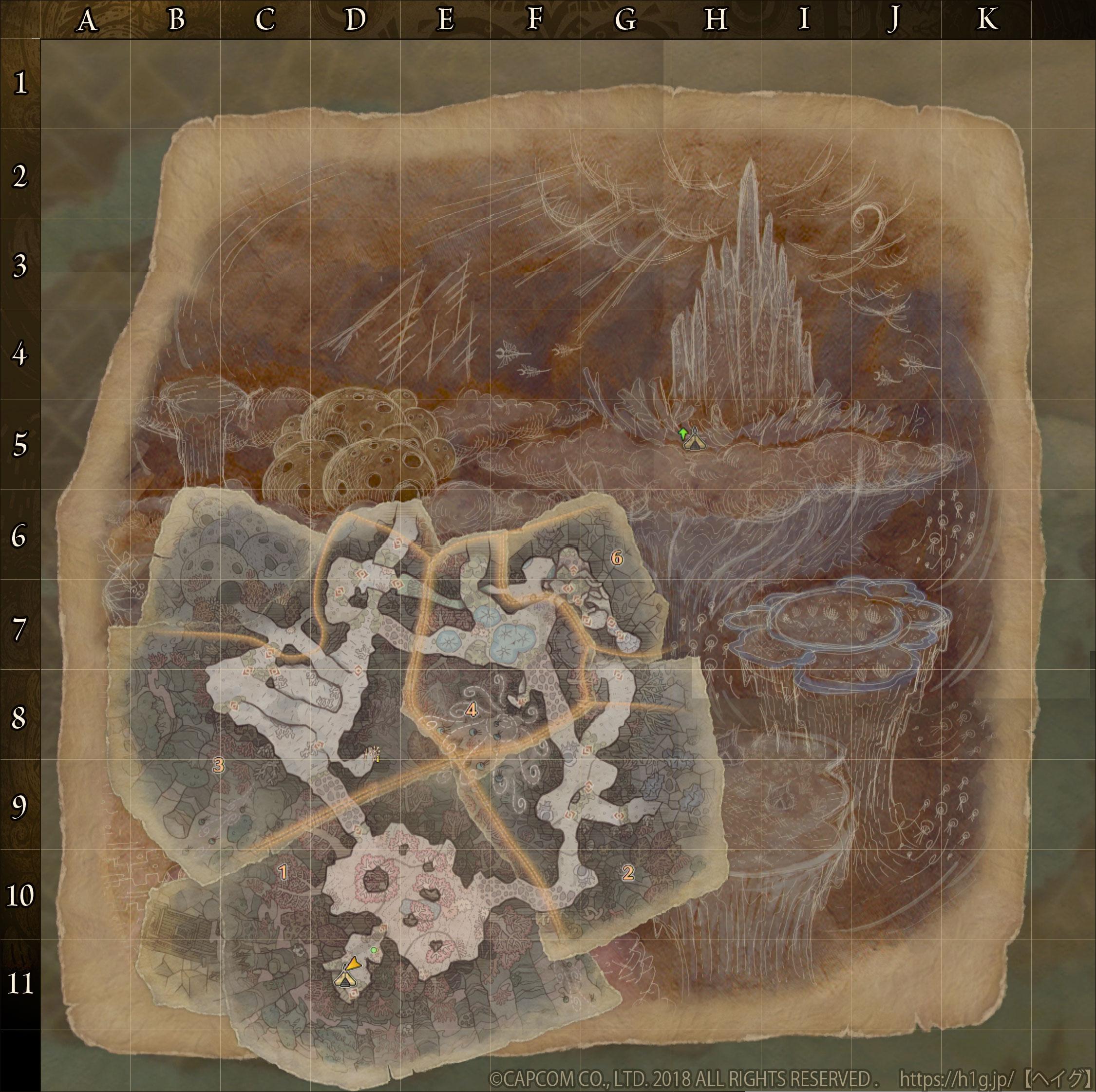 陸珊瑚の台地-下層.jpg