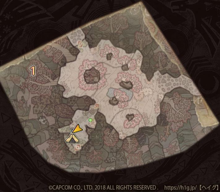 陸珊瑚の台地-下層1.jpg