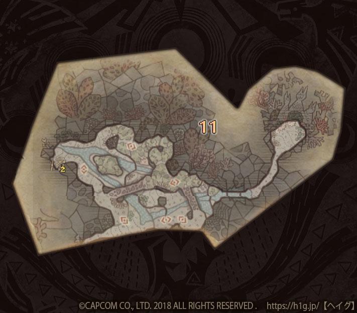 陸珊瑚の台地-中層11.jpg