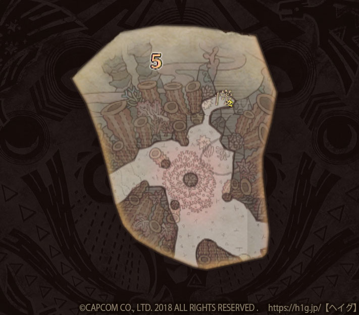 陸珊瑚の台地-中層5.jpg