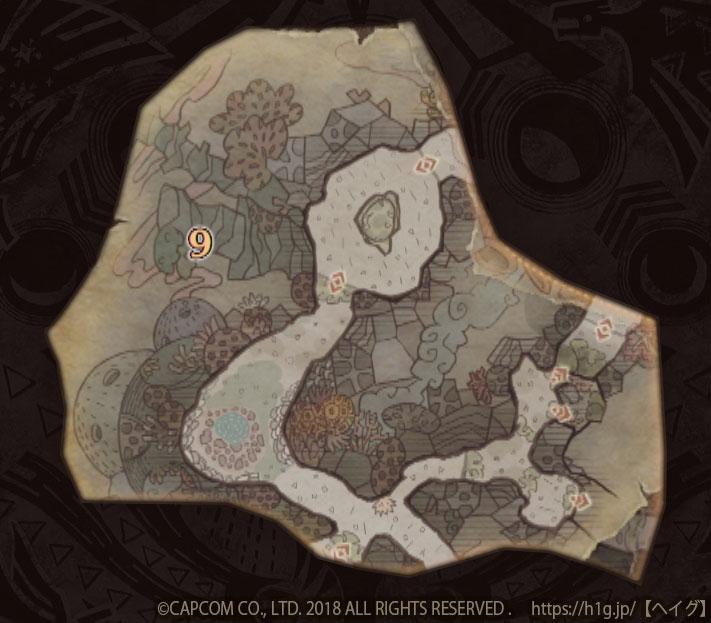 陸珊瑚の台地-中層9.jpg