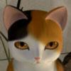 猫様のお宿からの脱出 攻略Wiki【ヘイグ攻略まとめWiki】