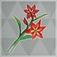 赤い染め花.png
