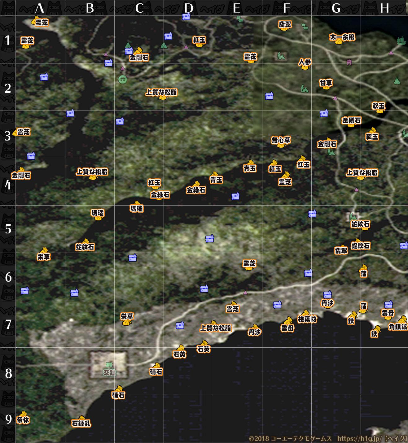マップ21群生地.jpg